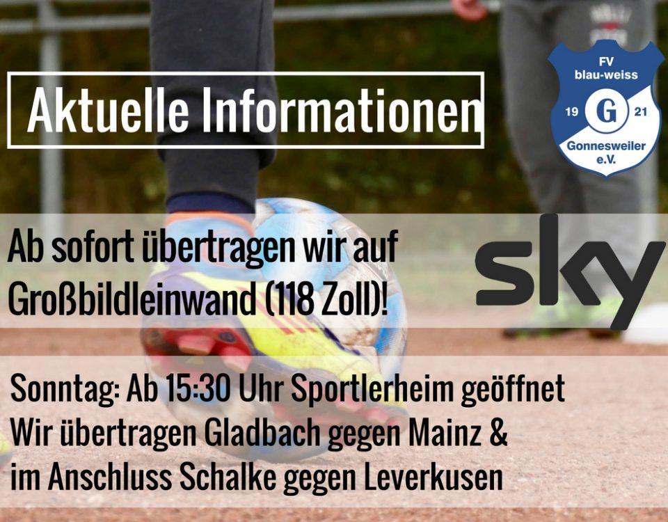 amtsblatt-ausgabe_facebook-fv-gonnesweiler-2
